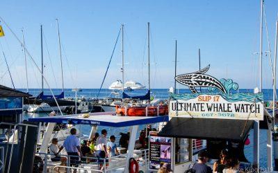 Aloha Hawaii: Cruising the Hawaiian Islands with Seabourn