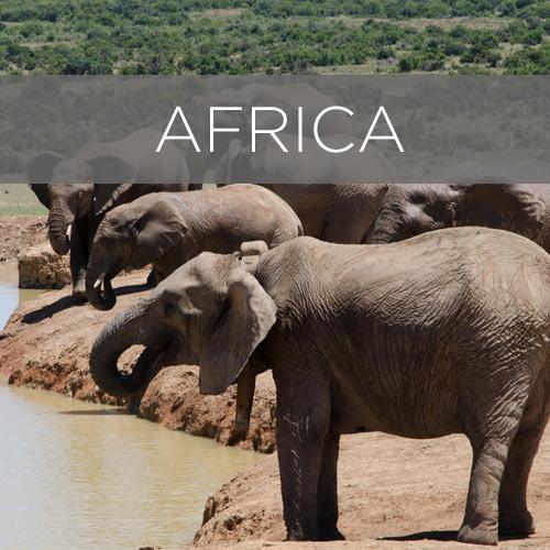 desination africa