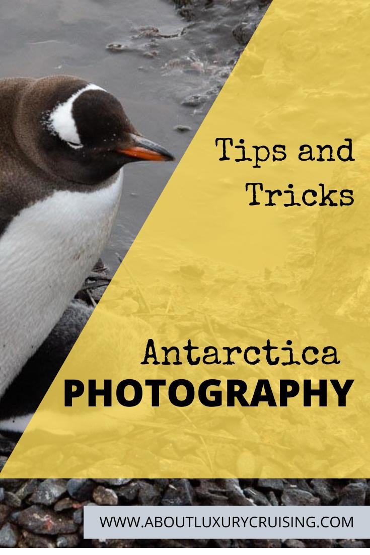 Antarctic Photographt Tips